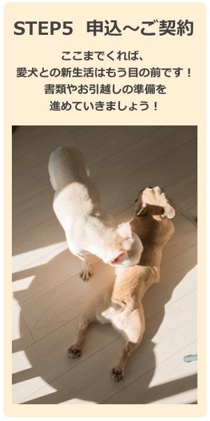 愛犬との新生活はもうすぐ!